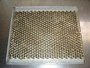 換気扇フィルターの汚れ