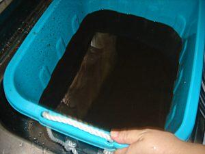 換気扇洗浄汚水