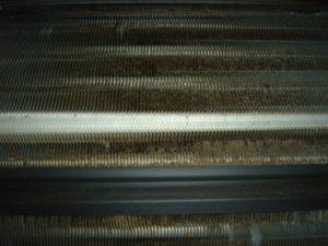 エアコン内部カビ